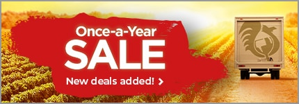 Once-a-Year SALE - New deals added! >