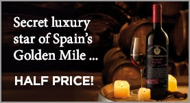 Secret luxury star of Spain's Golden Miles .... HALF PRICE
