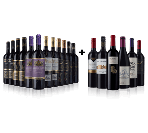 Mature Spanish Reds (12) and Argentinian Malbec (6) 18 bottle case