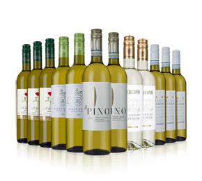Italian Pinot Grigio Mix - 20 percent off
